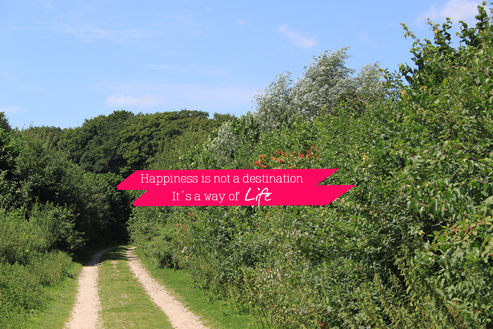 Happiness is not a destination #3