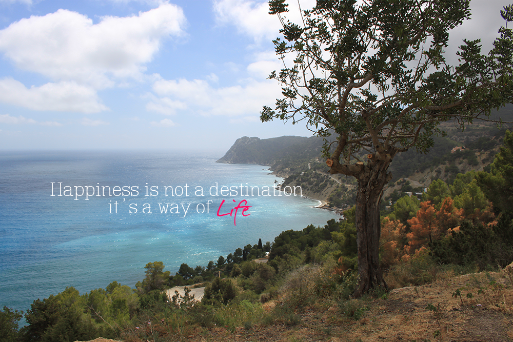 happiness is not a destination #5